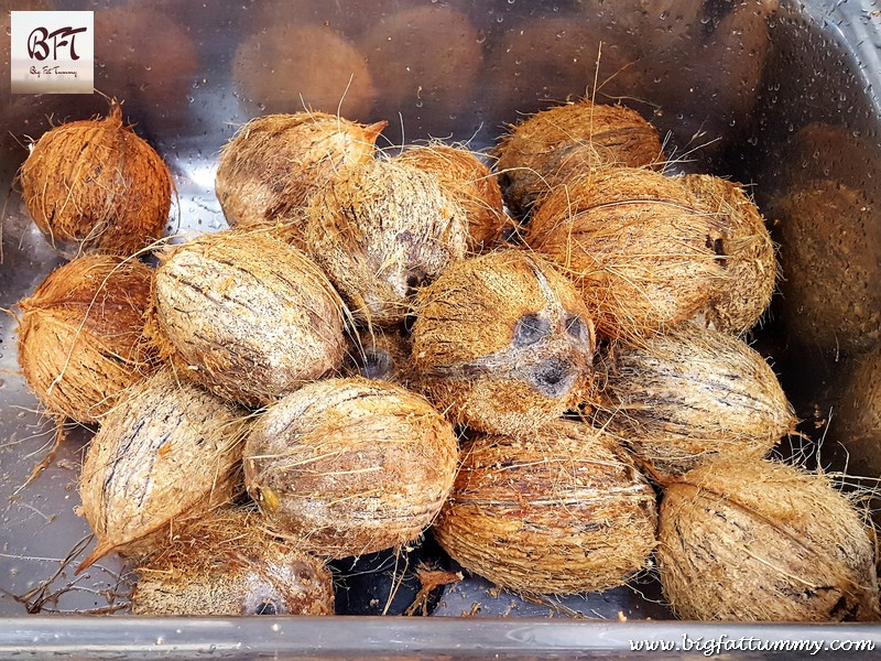 Preparation of Homemade Sur / Coconut Toddy